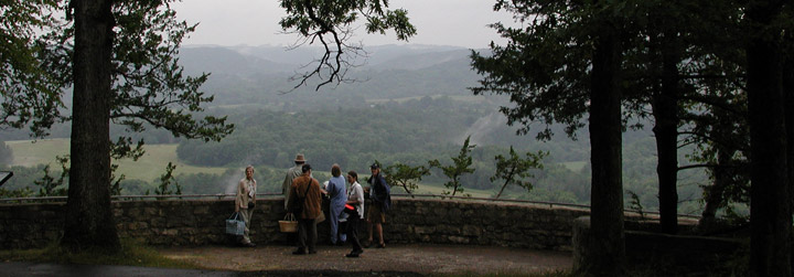 Mushroom collectors at overlook with trees.