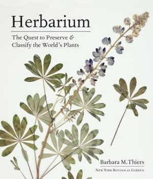 Cover image of the Herbarium book with pressed lupine plant.